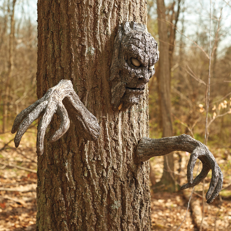 Creepy Tree Face and Branch Arms Set