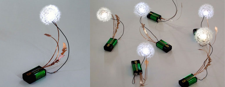 Dandelight - Made From Real Dandelion Seeds