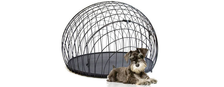 eiCrate - Modern Dog Crate