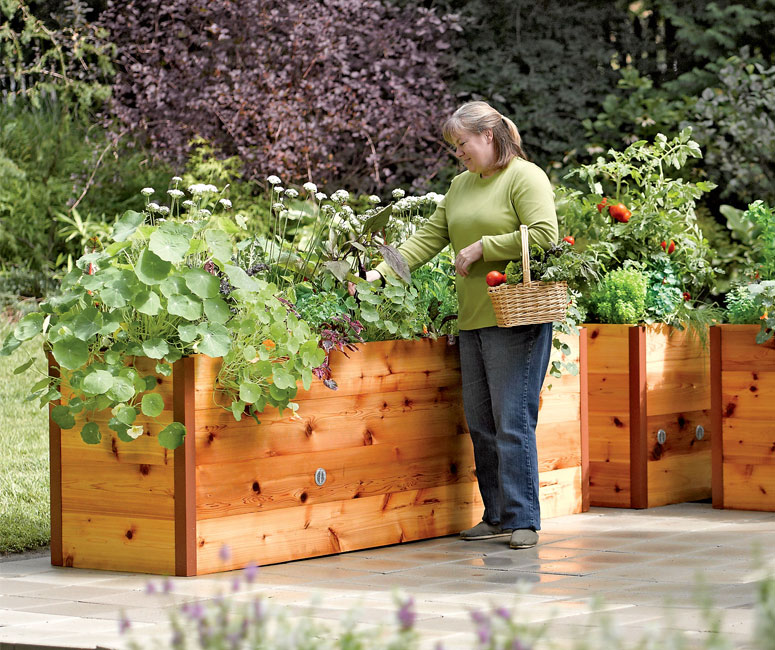 Elevated cedar raised garden beds the green head - Elevate the sustainable house ...