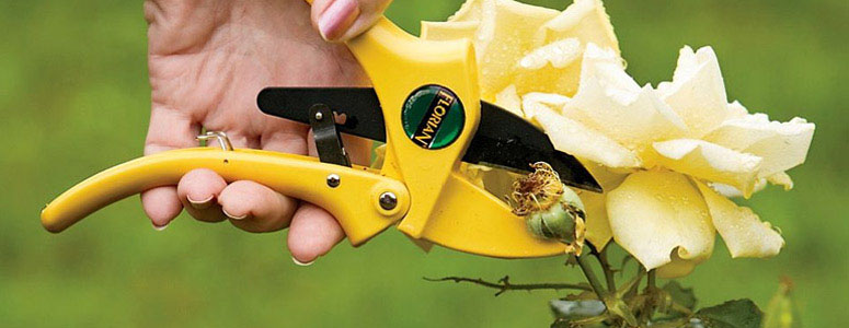 Florian Ratchet-Cut Pruners