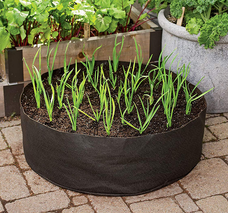 Garlic Grow Bag