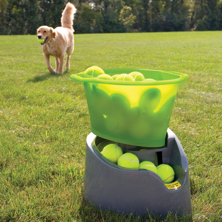 GoDogGo Remote Fetch - Automatic Tennis Ball Launcher for Dogs
