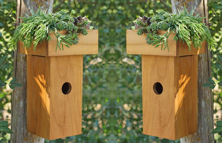 Greenroof Teak Birdhouse