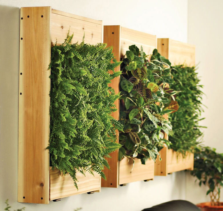 Indoor living wall planters the green head - Wall mounted planters outdoor ...