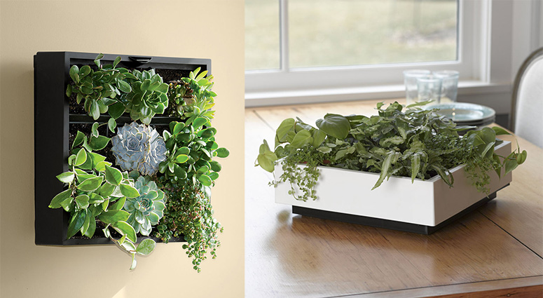 Living Art Green Wall Tabletop Planter