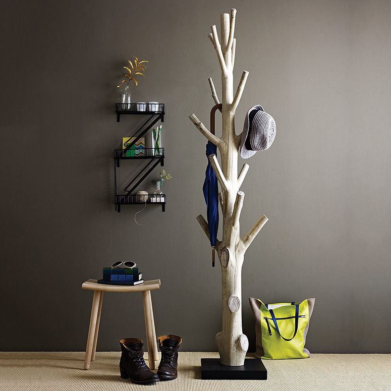 Mangosteen Tree Trunk Coat Rack