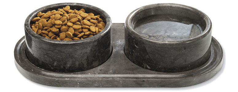 Travel Dog Food Bowl