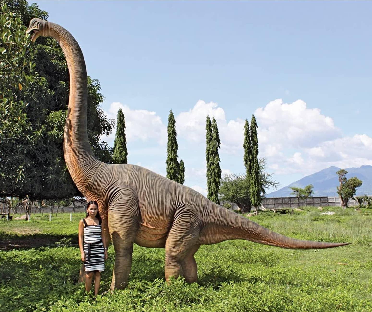 Massive Brachiosaurus Dinosaur Statue The Green Head
