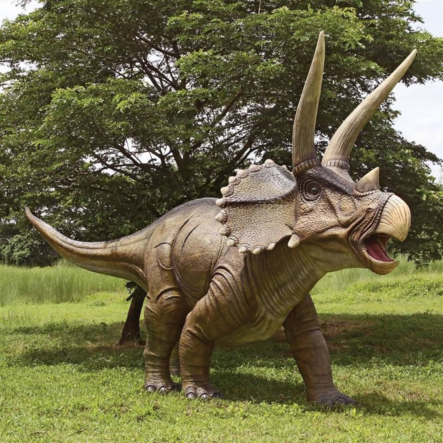 massive lifesize charging triceratops dinosaur statue the green head