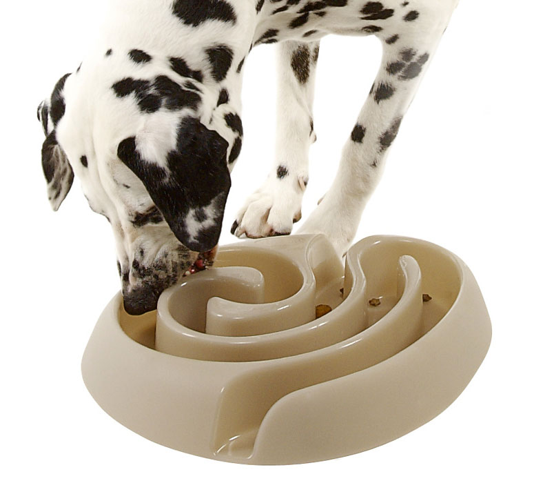 Maze Dog Food Bowl Slows Rapid Eating The Green Head