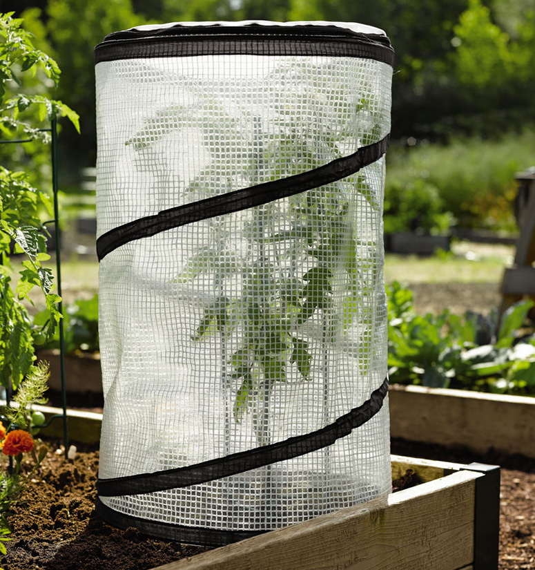 Miniature Pop-Up Tomato / Pepper Greenhouse