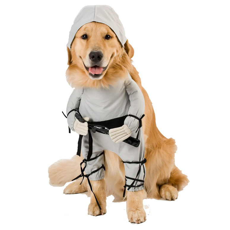 Ninja Dog Pet Costume The Green Head