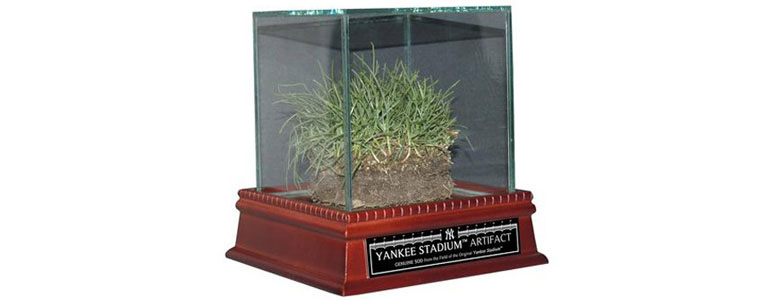 Original Yankee Stadium Freeze-Dried Grass