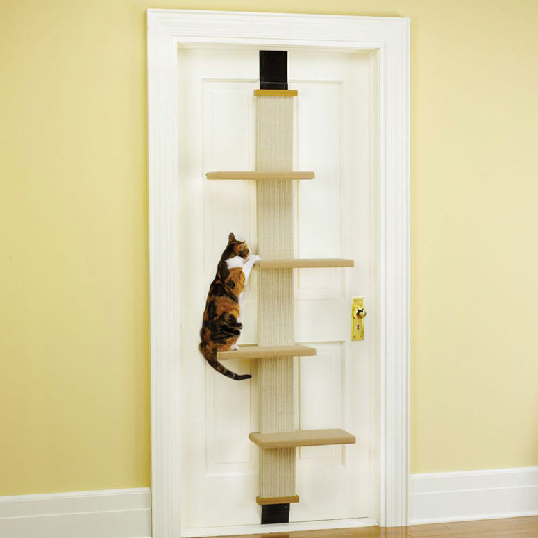 Marvelous Over The Door Cat Climber