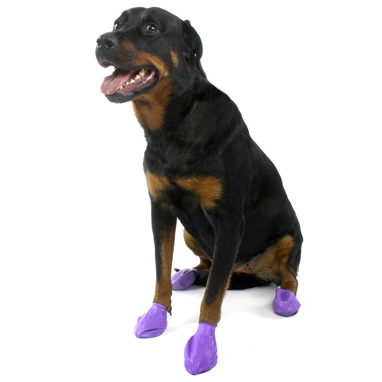Pawz Natural Rubber Dog Boots The Green Head