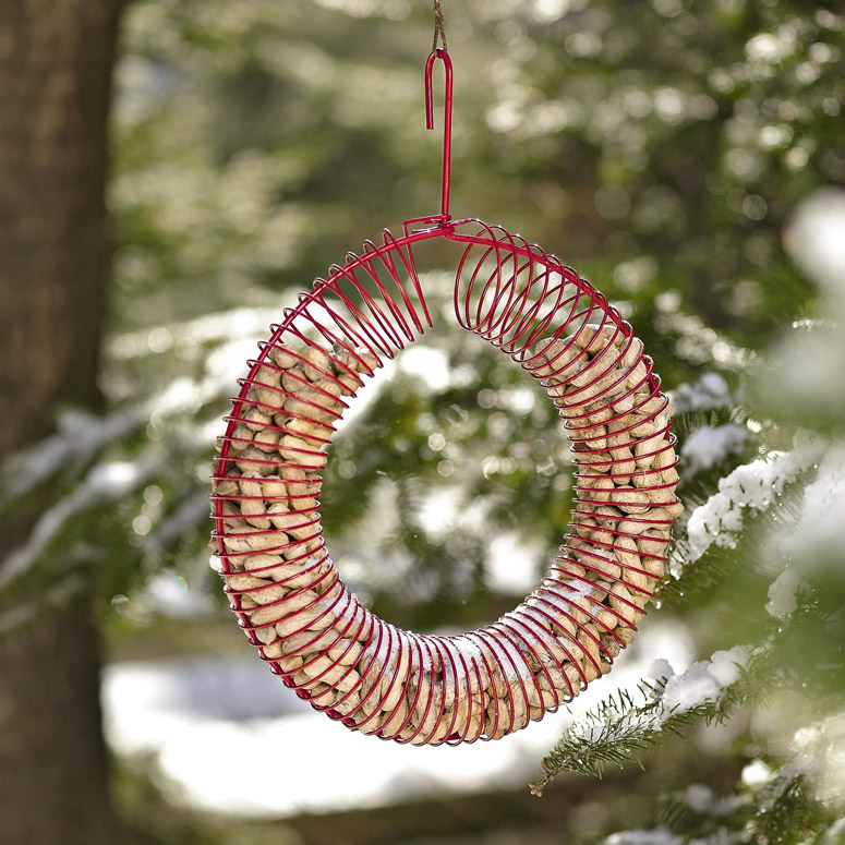 Peanut Wreath - Bird Feeder and Squirrel Attractor