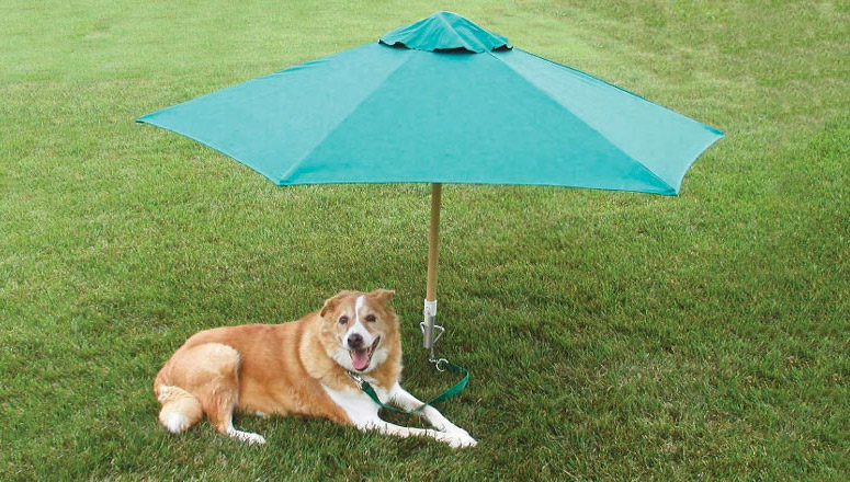 PetBrella - Pet Umbrella & Tie-Out Stake