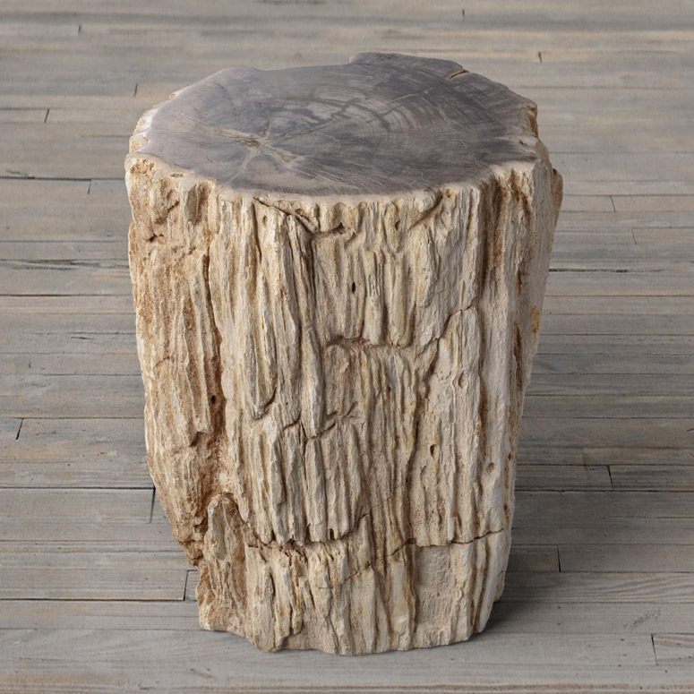 Petrified wood stump end table the green head