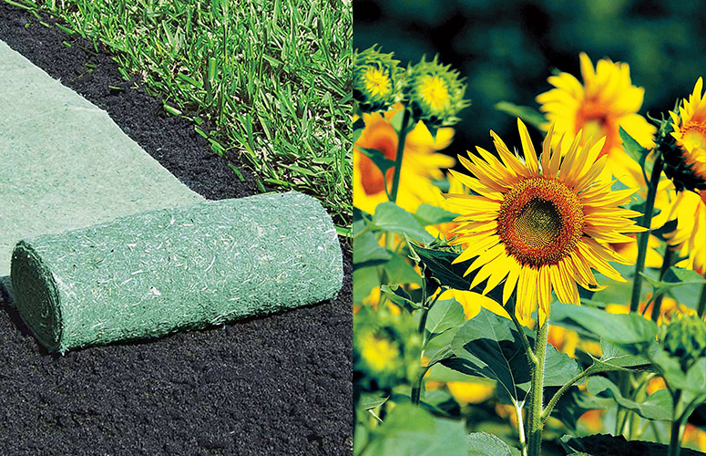 Roll Out Flowers, Roll Out Grass, Flower Rocket and more...
