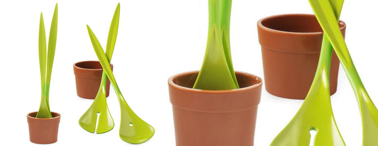 Salad Plant - Potted Salad Servers