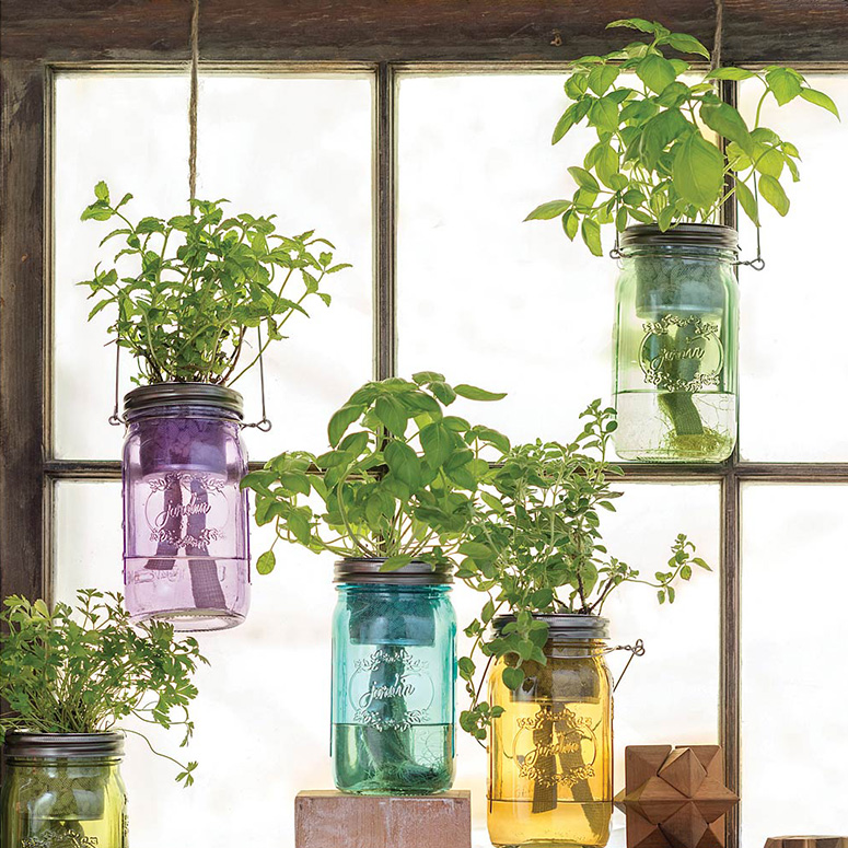 Self Watering Mason Jar Indoor Herb Garden
