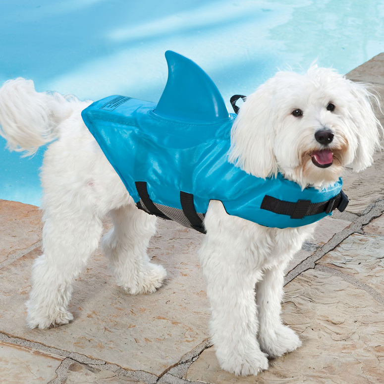 Shark Fin Life Jacket For Dogs The Green Head