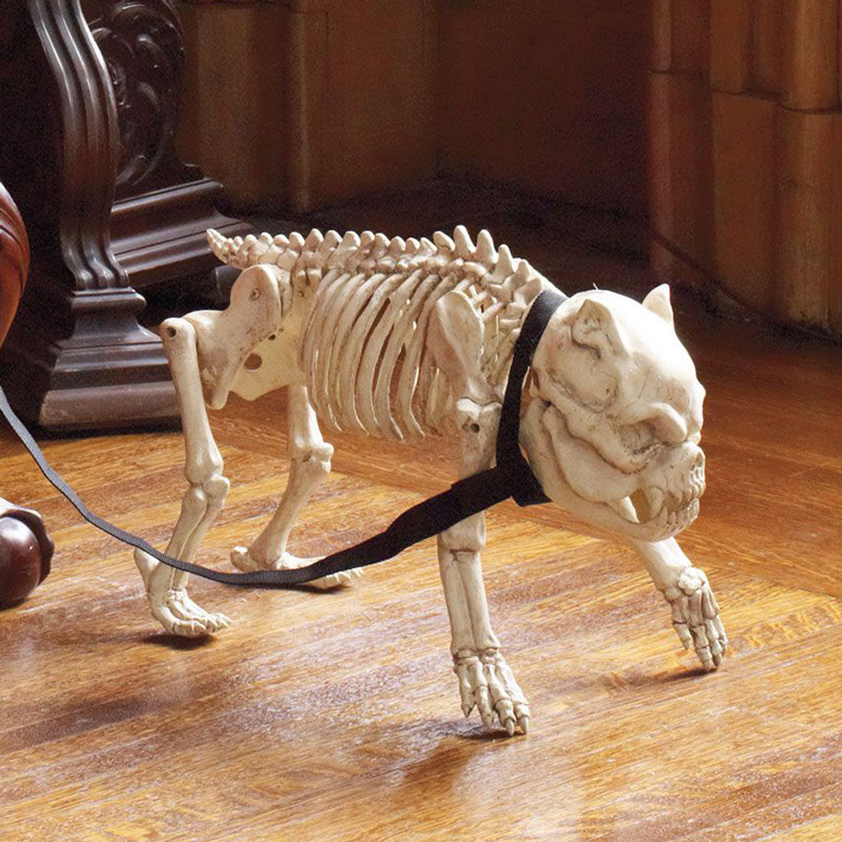 Skeleton Dog On Leash