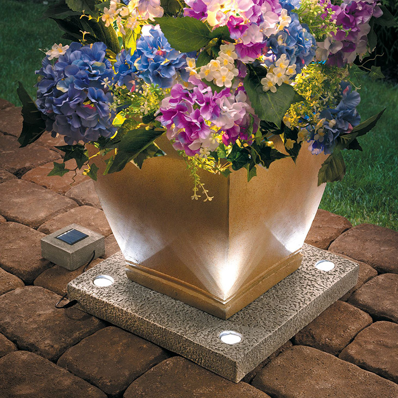 what to plant in planter box ideas