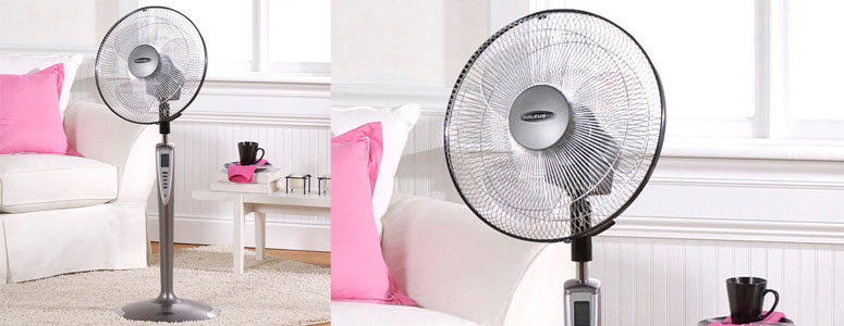 Soleus Figure 8 Smart Fan