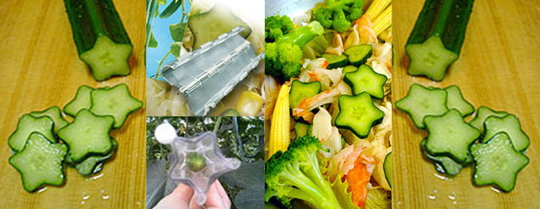 Heart Shape//Pentagon Cucumber Shaping Mold Vegetable Mould Tools Growth Q1R3