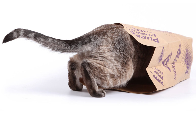 SuperCat Caves - Catnip-Infused Brown Grocery Bags