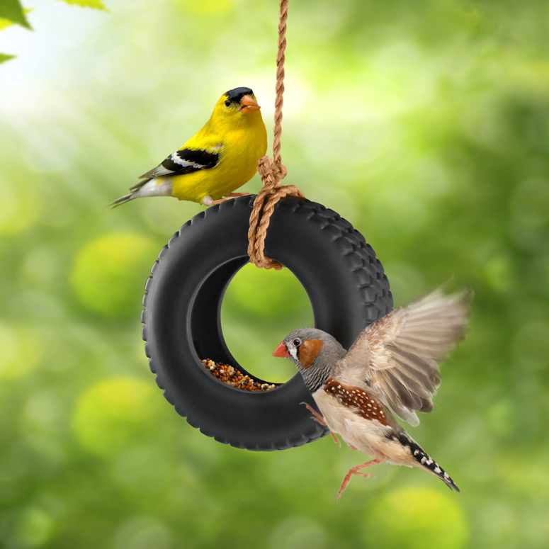 Apologise, but, swinging bird feeders