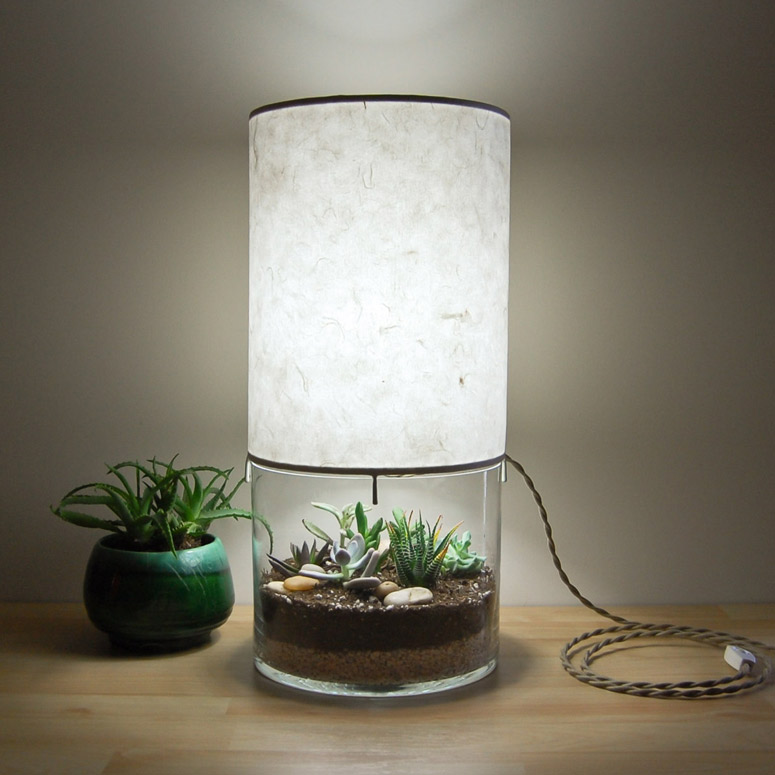 Terrarium Display Table Lamp The Green Head