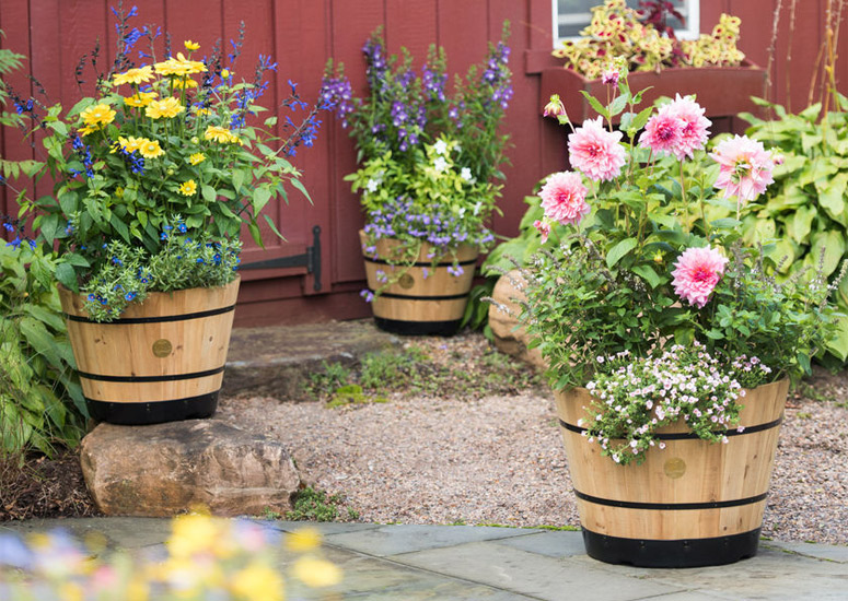 VegTrug Wooden Whiskey Barrel Planter