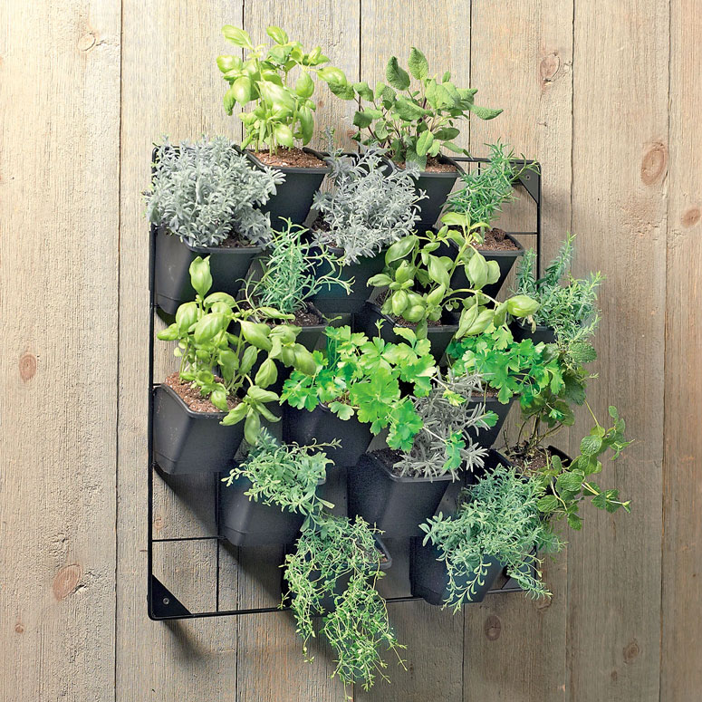 vertical wall garden the green head. Black Bedroom Furniture Sets. Home Design Ideas