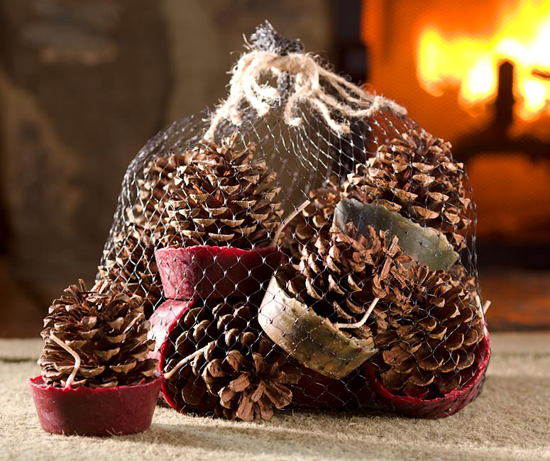 Wax bottom pine cone fire starters the green head