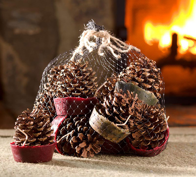 Wax-Bottom Pinecone Fire Starters