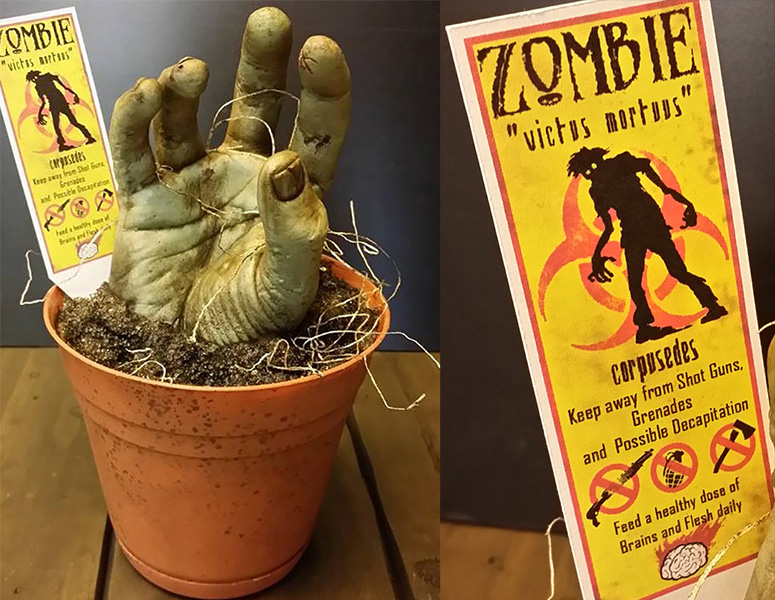 Zombie Planter - Grow Your Own Zombie!
