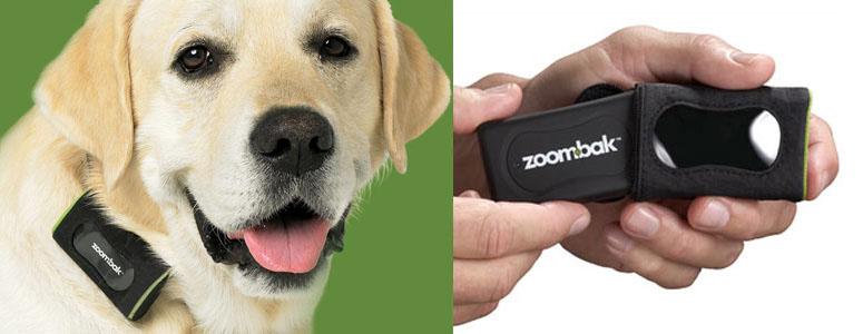 Zoombak Gps Dog Tracking System